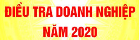 Điều tra DN năm 2020